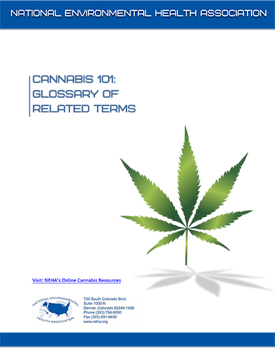 Cannabis 101: Glossary of Terms cover image